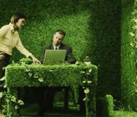 """Vivere """"green"""" anche in ufficio"""