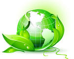 Cosa sono le biomasse?