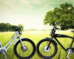 Che differenza c'è tra bici elettrica e bici elettrica a pedalata assistita?