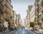 Pannelli vegetali verticali per pulire l'aria: City trees installati a Modena, la nuova tecnologia green in città