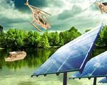 Giochi fotovoltaici, gadget solari, ufficio e fashion