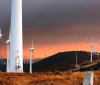 Pale biodegradabili, la ricerca eolica si evolve