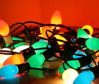 Luci di Natale alimentate da un' anguilla elettrica