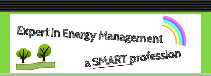 Expert in Energy Management