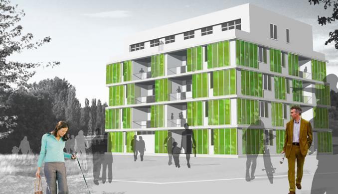 Algae house and biomass