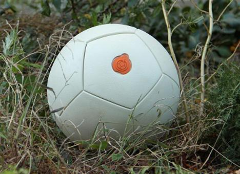 Soccer ball generates electricity